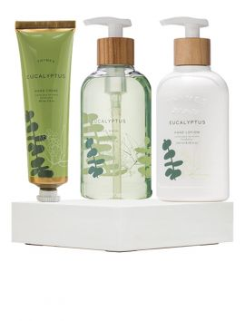 Eucalyptus Energizing Hands Collection